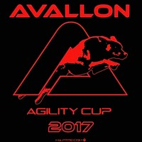 avalloncup2017